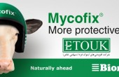 Mycofix Plus